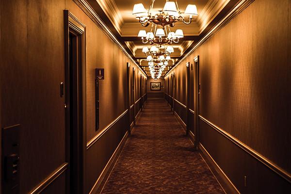 HOTELS HOTEL PEST MANAGEMENT CENTRAL AUCKLAND