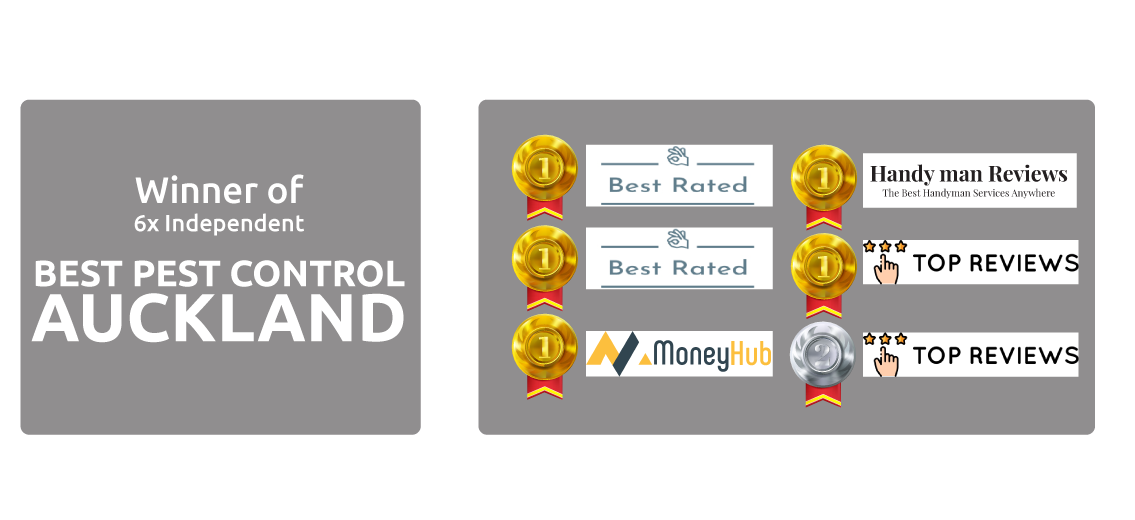 Independently best pest control Auckland awards