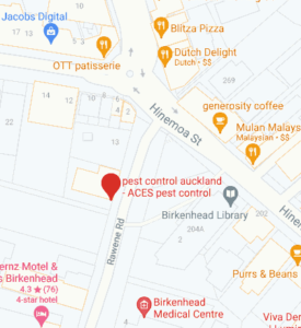 google map location ACES pest control